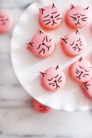 DIY….Cat Shaped Macarons
