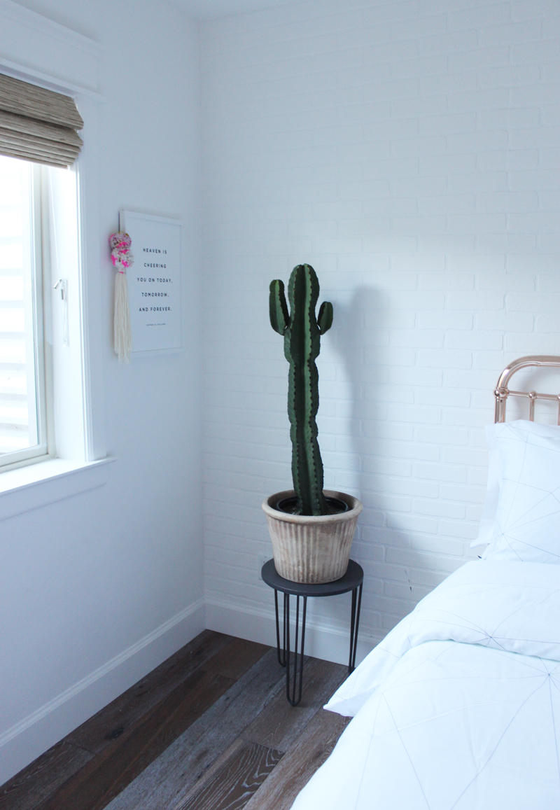 teen-room-full-cactus